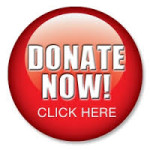 Donate Now button for website